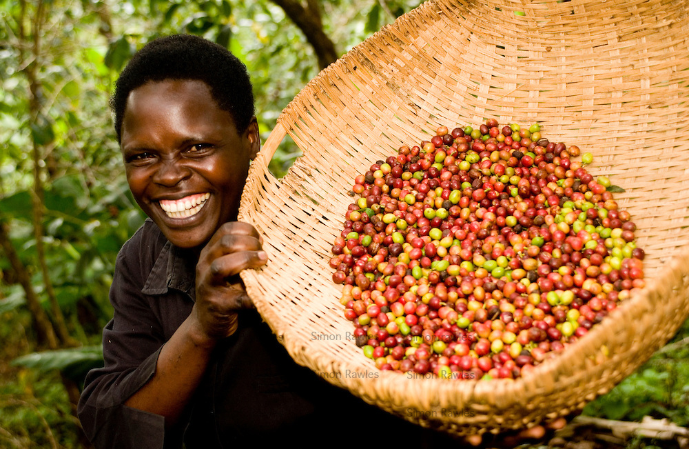 the working conditions of coffee farmers Fair trade is a foundation whose stated goal is to help producers in developing countries achieve better trading conditions members of the movement advocate the payment of higher prices to exporters, as well as improved social and environmental standards.